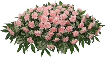 Timeless Traditions Pink Carnation Casket Spray in Omaha NE, Piccolo's Florist