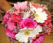 Pink Esperance in New Castle PA, Butz Flowers & Gifts