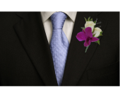 Orchid & Rose Boutonnierre in Dallas TX, In Bloom Flowers, Gifts and More