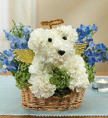 All Dogs Go To Heaven in Rochester NY, Expressions Flowers & Gifts