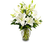 Classic White Lilies in Jersey City NJ, Hudson Florist