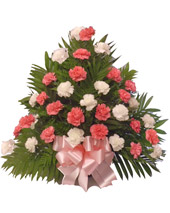 32 Carnation Tribute Basket: Pink and White in Indianapolis IN, Steve's Flowers and Gifts