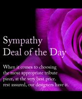 Sympathy 'Deal of the Day' in Indianapolis IN, Steve's Flowers and Gifts