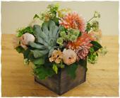 Queens Flowers - Gateway to Autumn - Starbright Floral Design