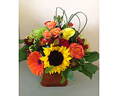 Orange Sunset in Smyrna GA, Floral Creations Florist