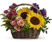 Sunny Sunflowers in Cocoa FL, A Basket Of Love Florist