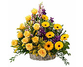 Vivid Memories Basket Tribute in Prospect KY, Country Garden Florist