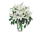 Perfect White Lilies in Tiburon CA, Ark Angels Flowers