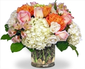 Cherished Moments by Nature Nook� in Cleves, Ohio, Nature Nook Florist & Wine Shop