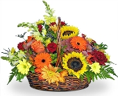 Fabulous Fall by Nature Nook� in Cleves OH, Nature Nook Floral Center