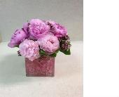 Pink Peonies in Bayside, New York, Bell Bay Florist