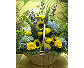 Sunshine & Blue Skies in Toms River NJ, Village Florist
