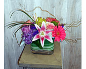 Happiness in Dallas TX, Petals & Stems Florist