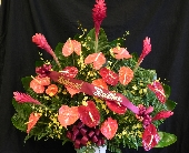 MTF610 Tropical Fan Style Arrangement in Mililani Town HI, Mililani Town Florist