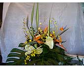 Tropical in Honolulu, Hawaii, Marina Florist