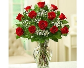 1 Dozen Premium Long Stem Red Roses in La Mesa CA, Conroy's Flowers