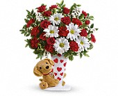Send a Hug I Ruff You by Teleflora in Mississauga ON, Mums Flowers