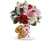 Send a Hug You're Fur Me by Teleflora in Watertown NY, Sherwood Florist
