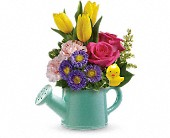 Teleflora's Send a Hug Sunny Spring Bouquet in Chantilly VA, Rhonda's Flowers & Gifts