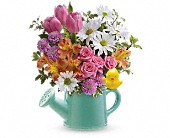 Teleflora's Send a Hug Tweet Tweet Bouquet in Ammon ID, Petal Passion