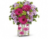 Teleflora's Thanks A Daisy Bouquet in Highlands Ranch CO, TD Florist Designs