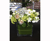 Holiday Box in Bellevue WA, CITY FLOWERS, INC.