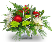 Harrison Flowers - Holiday Reflections by Nature Nook® - Nature Nook Floral Center
