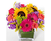 Birthday Arrangment in Ammon ID, Petal Passion