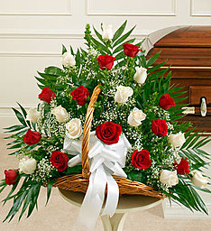 Red & White Roses in East Amherst NY, American Beauty Florists