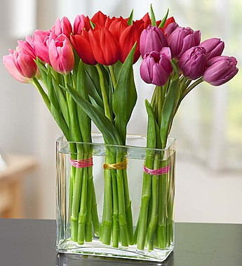 Austin Flowers - Modern Tulips For Your Valentine - Heart & Home Flowers