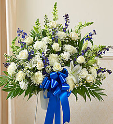 Traditional Blue & White in East Amherst NY, American Beauty Florists