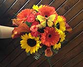 Butterflies, Sunflowers, and Calla Lilies in Alliance, Ohio, Miller's Flowerland