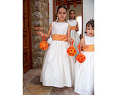 Flower Girl in San Antonio, Texas, The Tuscan Rose