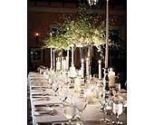 Custom reception in San Antonio, Texas, The Tuscan Rose