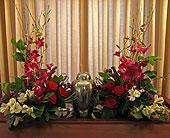Orchid & Roses in Richboro, Pennsylvania, Fireside Flowers