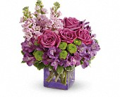 Teleflora's Sweet Sachet Bouquet in Edmonton AB, Petals For Less Ltd.