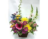 Spring Basket in Belleville ON, Live, Love and Laugh Flowers, Antiques and Gifts