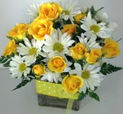 YELLOW DOTS & POSIES by Rubrums in Ossining NY, Rubrums Florist Ltd.