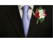 Star Studded Boutonniere in Dallas TX, In Bloom Flowers, Gifts and More