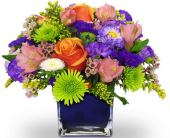 Harrison Flowers - Over The Rainbow by Nature Nook® - Nature Nook Floral Center