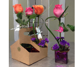 Mix & Match 4 Pack in Houston TX, Clear Lake Flowers & Gifts