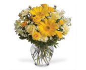 Nashville Flowers - Mom's Sunny Day - Flowers By Louis Hody