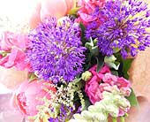 Colour Packed in North Vancouver BC, Special Moments Flowers And Gifts