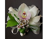 Cymbidium Orchid Corsage in Maple ON, Jennifer's Flowers & Gifts