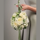 White Pomander in Clearwater, Florida, Hassell Florist