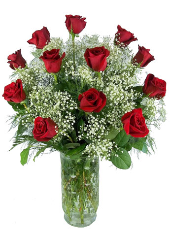 Dozen Red Roses in 'Retro' Vase in Raleigh NC, Johnson-Paschal Floral Company