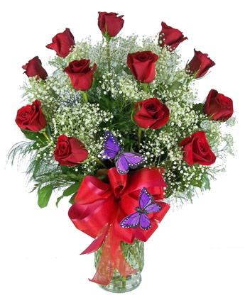 Premium Red Roses, with Butterfly and Bow in Raleigh NC, Johnson-Paschal Floral Company