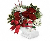 Send a Hug Snow Much Fun by Teleflora in Edmonton AB, Petals For Less Ltd.