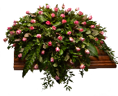 Eulogy Casket Spray in Ft. Collins CO, Palmer Flowers