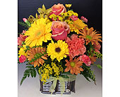 Sweet Treats Hershey in Moon Township PA, Chris Puhlman Flowers & Gifts Inc.